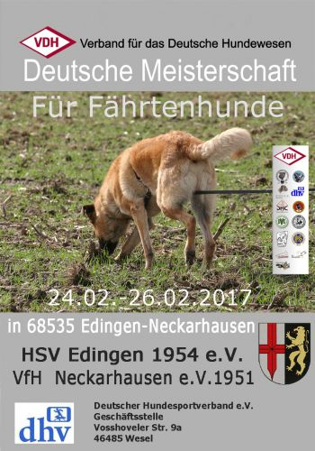 VDH DM FH 2017 in Edingen-Neckershausen